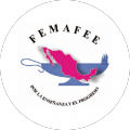 Federación Mexicana de Asociaciones de Facultades y Escuelas de Enfermería A.C.