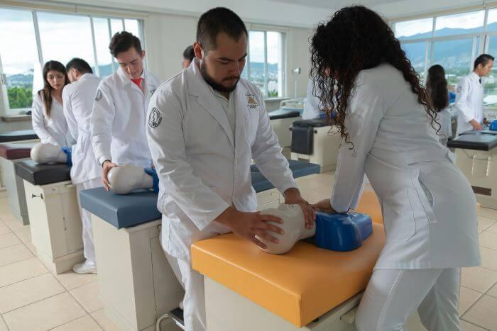 licenciatura en medico cirujano